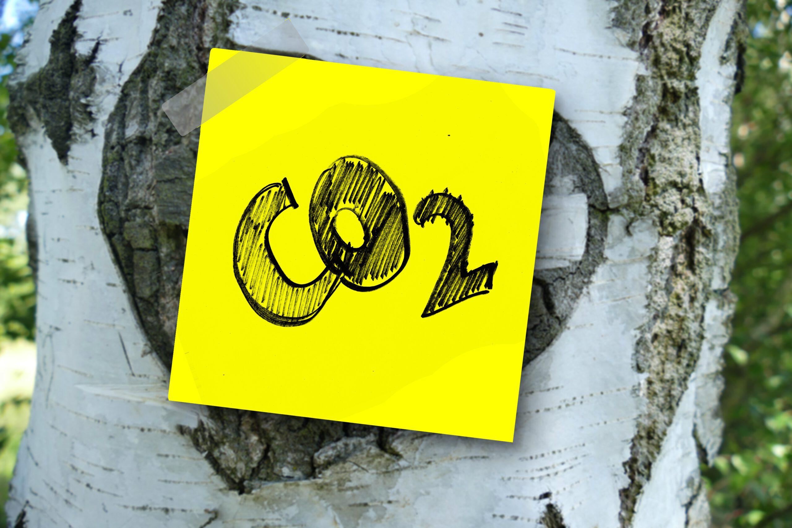 """Společnost byla zařazena na prestižní seznam """"Climate Change A List"""""""